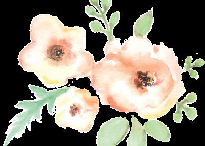 dia virág